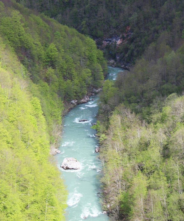 Sikt på den Tara floden från sikt ‡ a Tara Bridge, en för eviÄ på för Ä-urÄen 'av de mest härliga broarna i världen arkivfoto