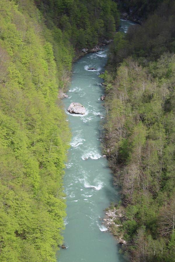 Sikt på den Tara floden från sikt ‡ a Tara Bridge, en för eviÄ på för Ä-urÄen 'av de mest härliga broarna i världen arkivfoton