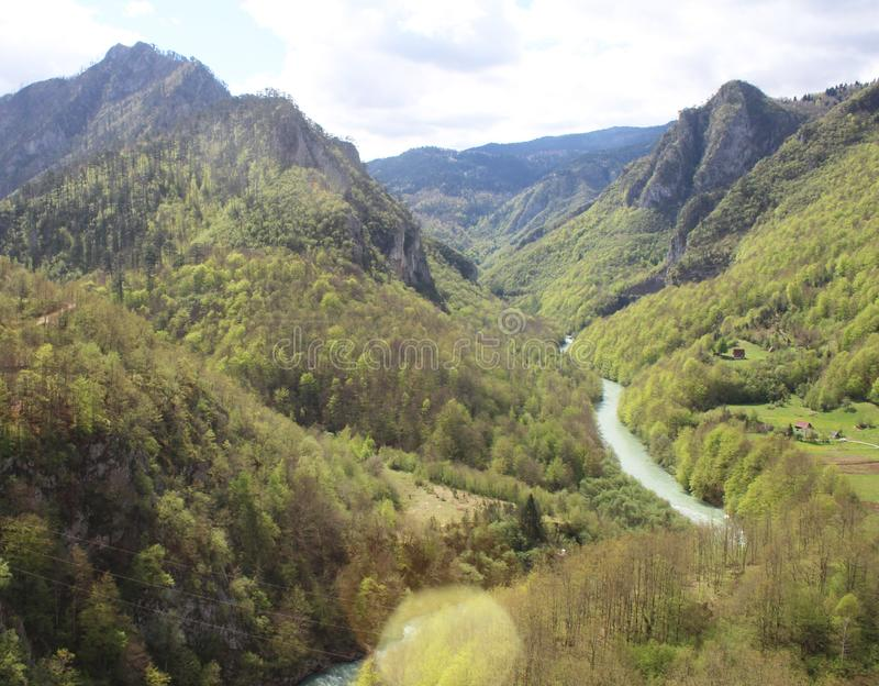Sikt på den Tara floden från sikt ‡ a Tara Bridge, en för eviÄ på för Ä-urÄen 'av de mest härliga broarna i världen arkivbilder