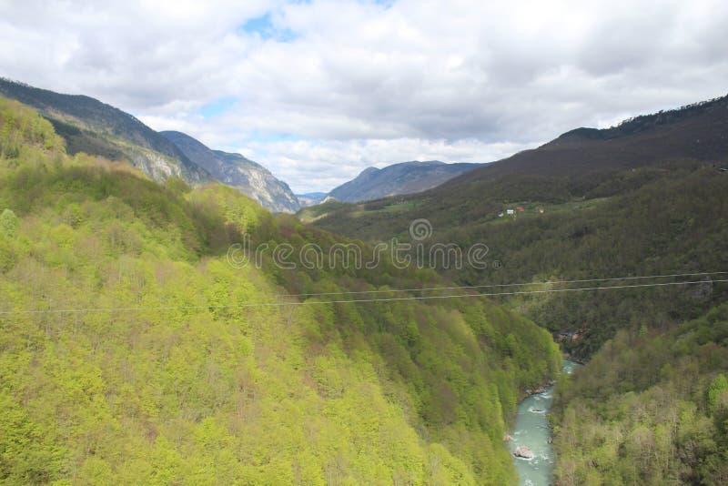 Sikt på den Tara floden från sikt ‡ a Tara Bridge, en för eviÄ på för Ä-urÄen 'av de mest härliga broarna i världen royaltyfria bilder