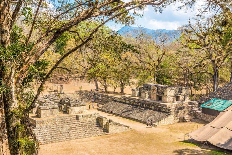 Sikt på den västra domstolen av Copan i Honduras fotografering för bildbyråer