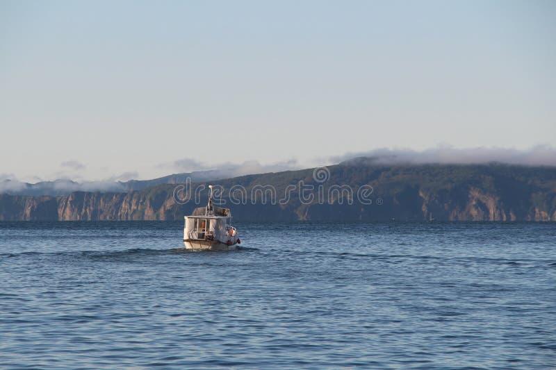 Sikt på det turist- fartyget i vattnet av den Avacha fjärden på den Kamchatka halvön, Ryssland royaltyfri bild