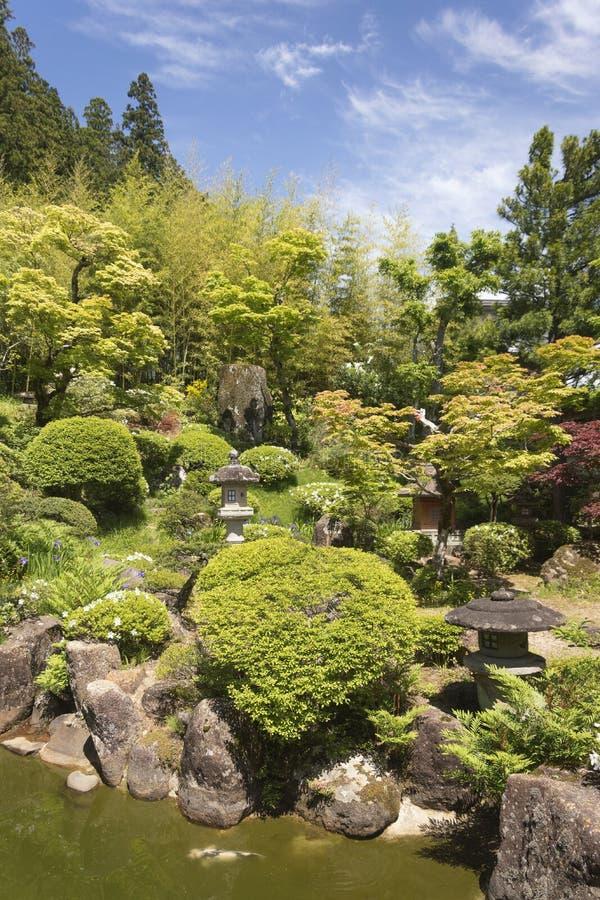 Sikt på en härlig blommande och blomstra grön tempelträdgård på en solig dag i Japan arkivfoton