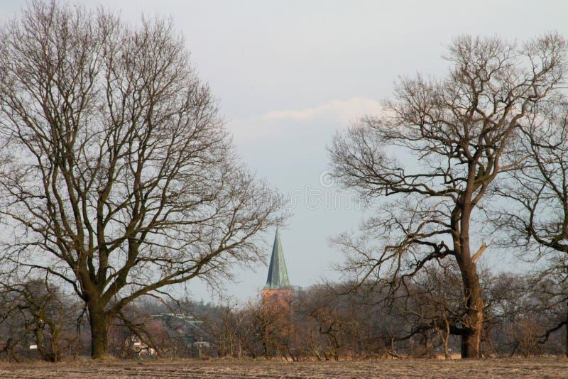 Sikt på en kyrktorn av en kyrka som döljas av träd i omge av papenburg Tyskland royaltyfri fotografi