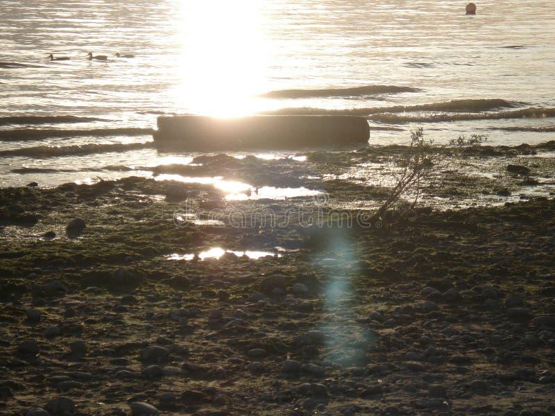 Sikt på en sjö royaltyfri fotografi