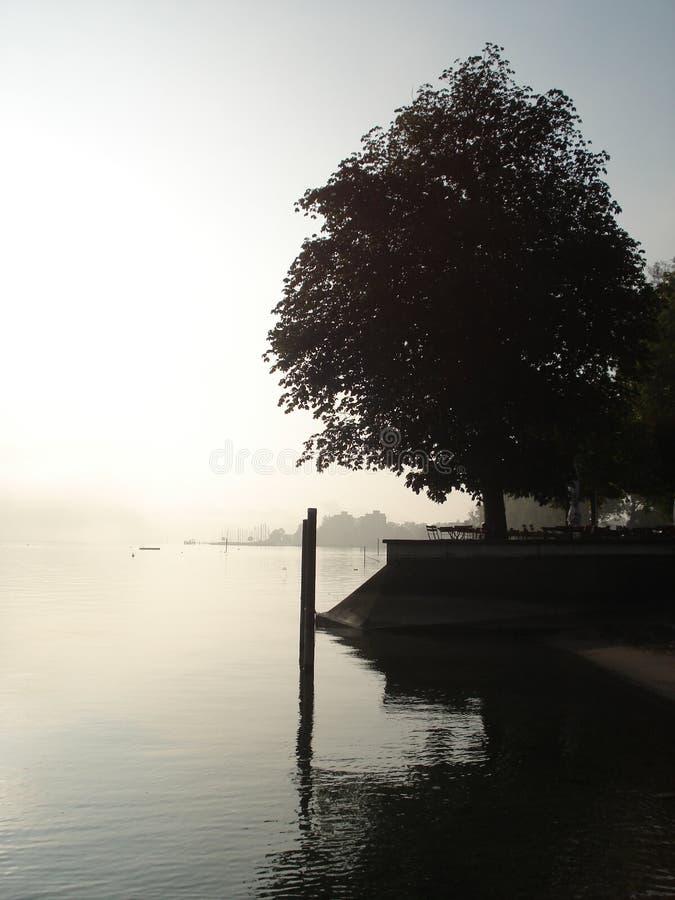 Sikt på en sjö royaltyfri bild
