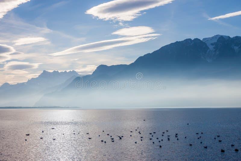 Sikt på fjällängar och Genève sjön arkivfoto