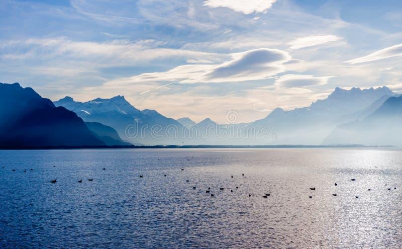 Sikt på fjällängar och Genève sjön royaltyfria foton