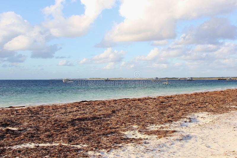 Sikt på Indiska oceanen i Cervantes, Nambung nationalpark, västra Australien royaltyfria bilder