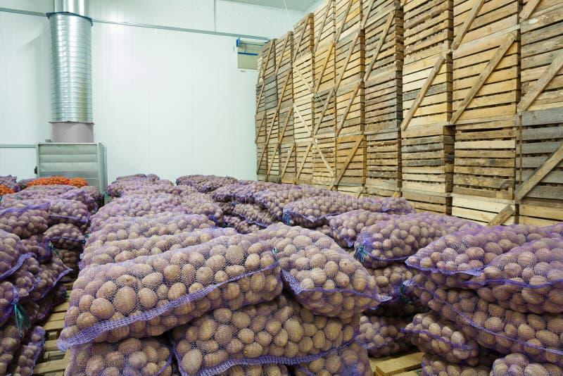 Sikt på påsar och spjällådor av potatisen i lagringshus arkivfoto