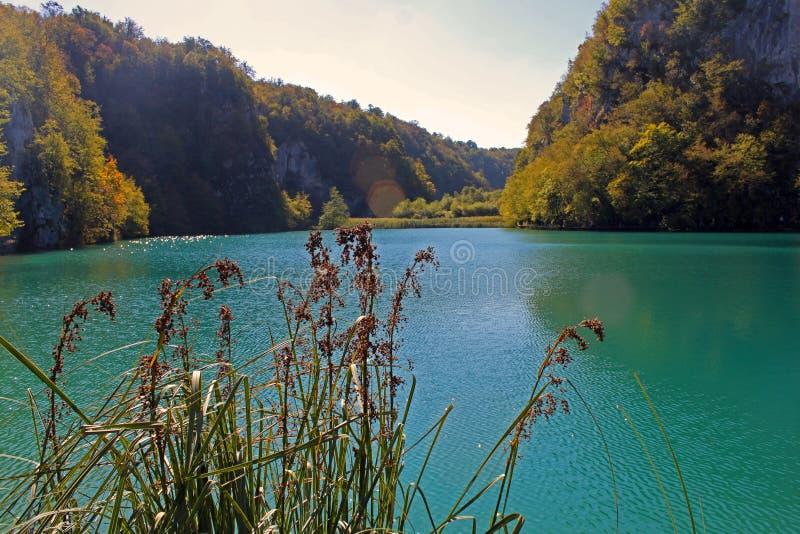 Sikt på Plitvice sjöKroatien fotografering för bildbyråer