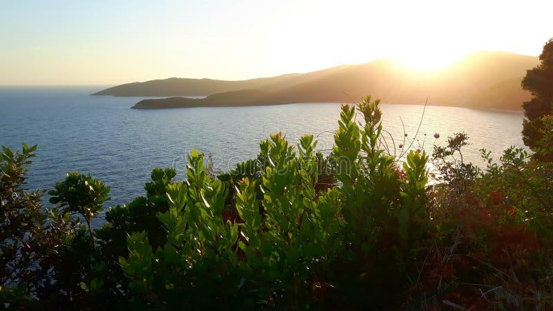Sikt på symbios av växter, havet, solen och himmel nära Budva, Montenegro arkivbild
