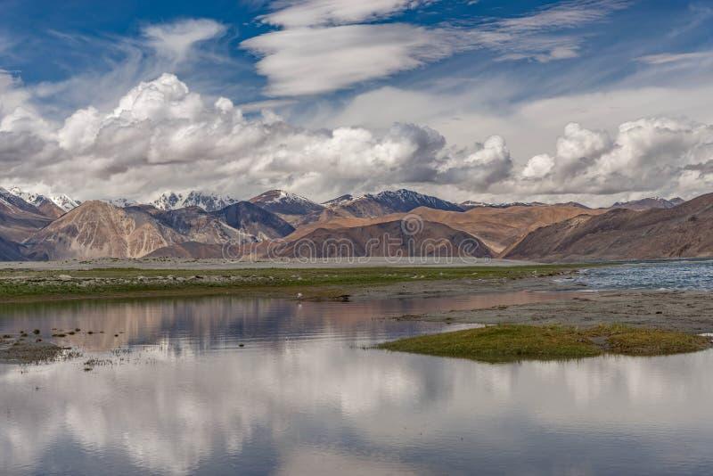 Sikt runt om Pangong Tso den bräckta sjön för hög grässlätt med molnet och blå himmel arkivbilder