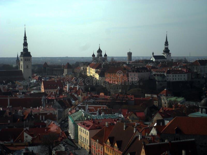 Sikt Tallinna royaltyfria foton