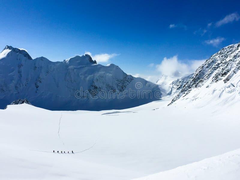 Sikt till den Mensu glaciären från det Delone bergpasserandet Bergsbestigare som g?r ?ver sn?dalen Belukha bergomr?de arkivfoto