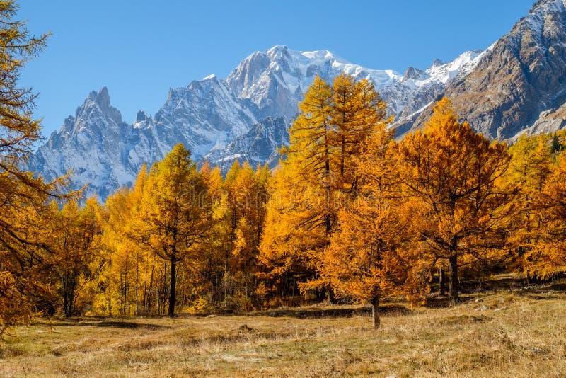 Sikt till den Mont Blanc hösten Italien Coumayeur vessladal royaltyfria bilder