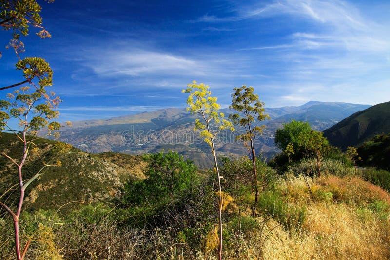 Sikt uppifrån av ett berg in i dalen under blå himmel i Sierra Nevada, landskap Andalusia arkivbild