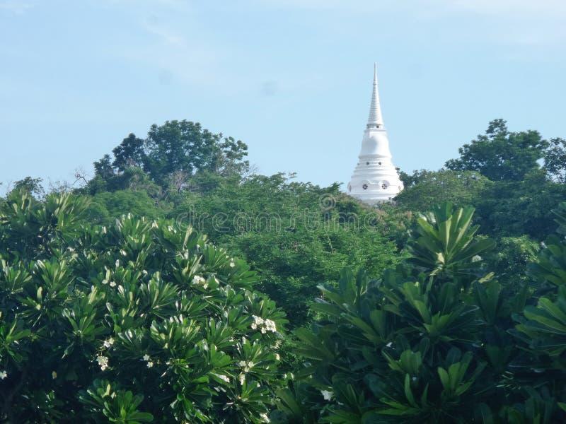 Sikt Wat Atsadang Nimit till och med det gräsplanträdgård och berget på den Sichang ön, Chonburi, Thailand royaltyfria foton