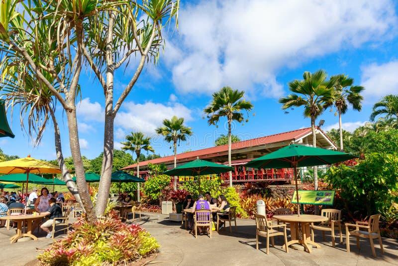 Sikten av den Dole ananaskolonin i Wahiawa, turnerar destinationen arkivfoton