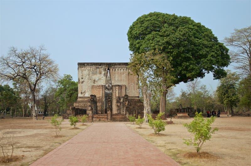 Sikten av den enorma buddha statyn och det månghundraåriga mangoträdet in i historiska berömda Sukhothai parkerar royaltyfria foton
