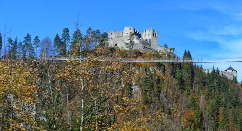 Sikten av den Palantinate skogen och slotten f?rd?rvar arkivbilder