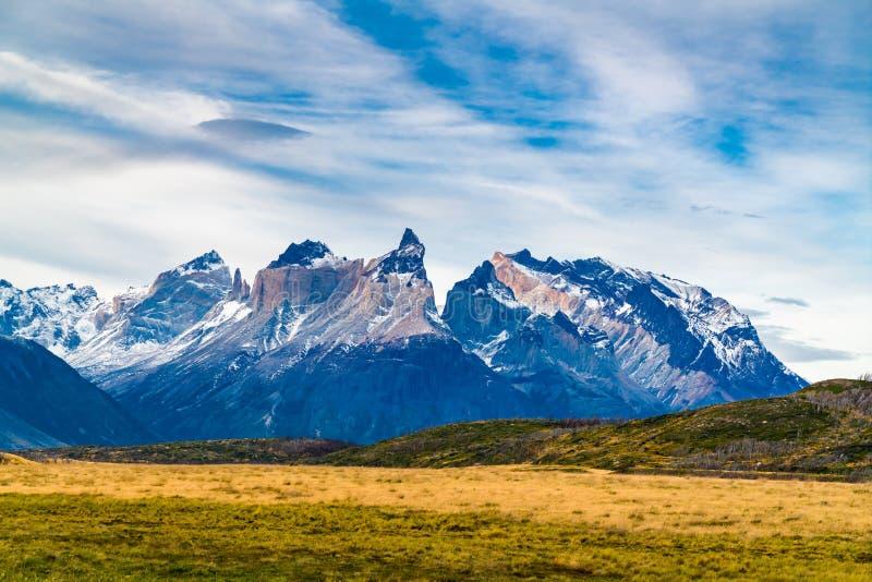Sikten av det härliga berget och stora betar på den Torres del Paine nationalparken arkivfoto