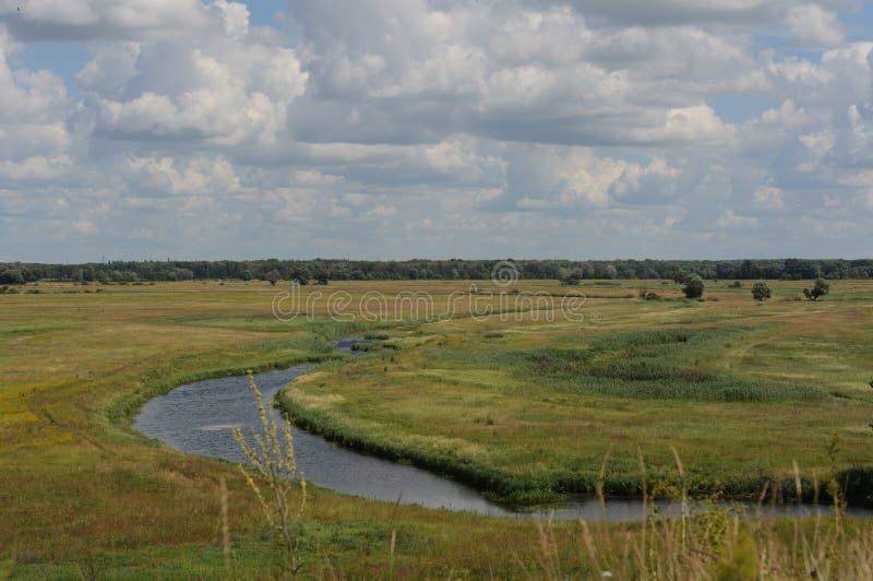 Sikten av floden och det gula fält från kullen på den soliga dagen för sommar royaltyfri fotografi