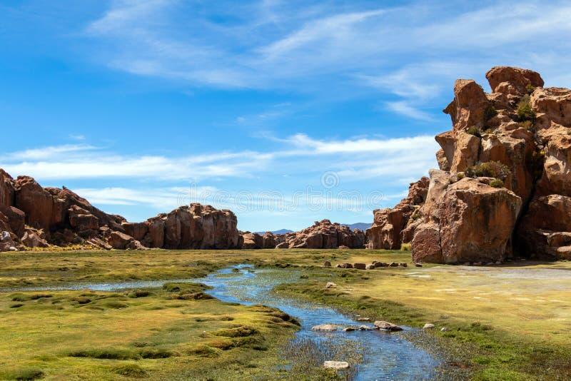 Sikten av Lagunaen Negra, den svarta lagunkanjonen med unikt geologiskt vaggar bildande i Altiplano, Bolivia royaltyfri foto