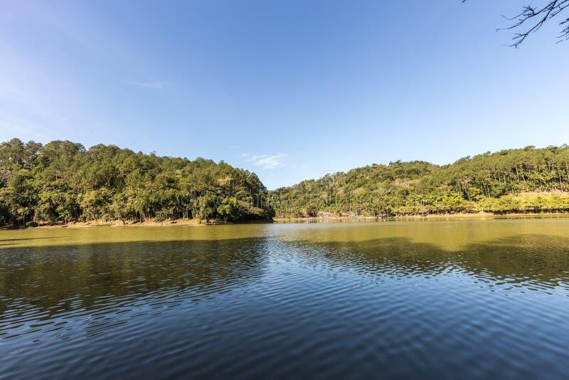 Sikten av Malwee parkerar sjön Jaragua gör Sul Santa Catarina royaltyfri bild