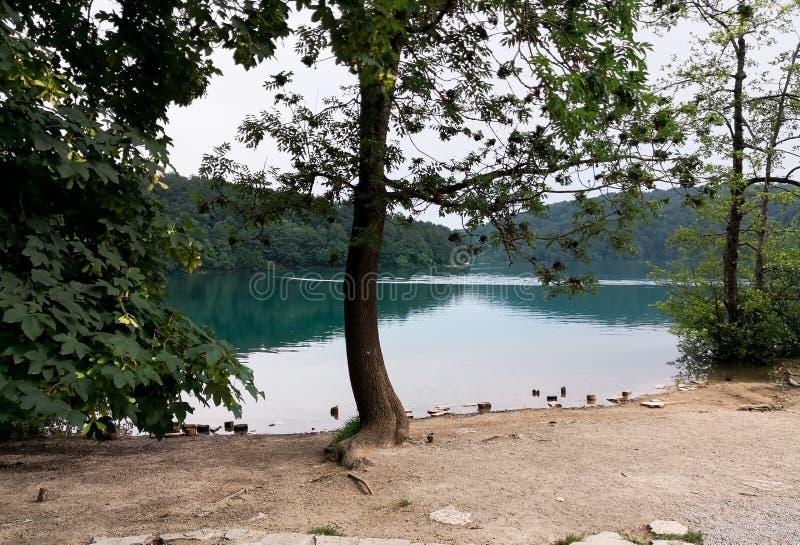 Sikten av naturliga Plitvice sjöar parkerar fotografering för bildbyråer