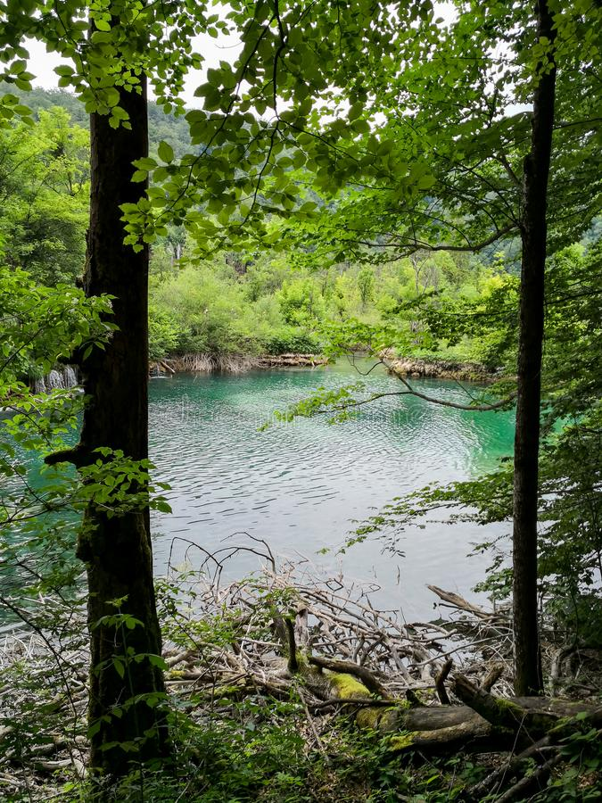 Sikten av naturliga Plitvice sjöar parkerar arkivfoto