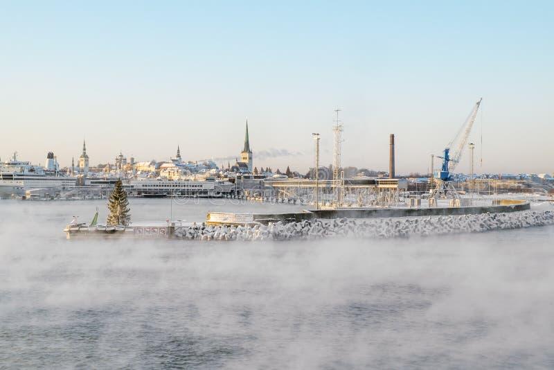 Sikten av porten av Tallinn och det baltiska havet övervintrar estonia royaltyfri foto