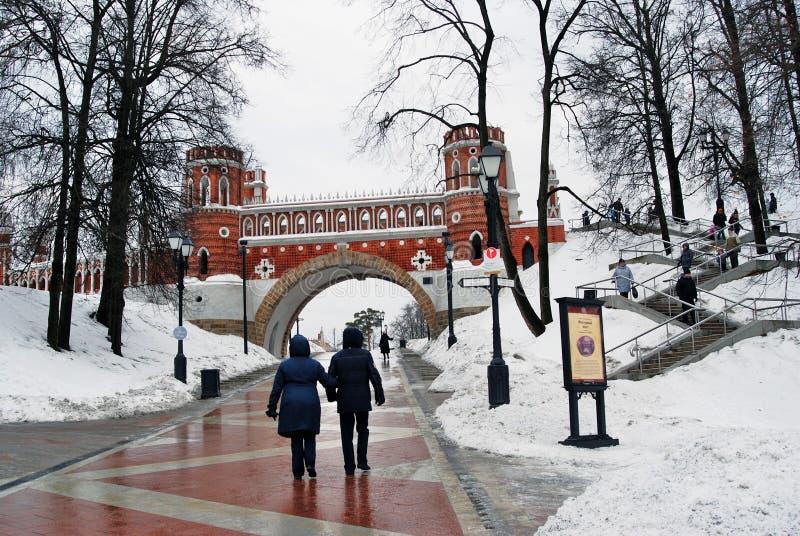 Sikten av Tsaritsyno parkerar i Moskva figurerad bro arkivbild