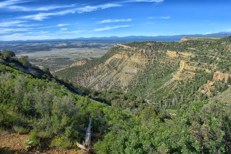 Sikten från utkikpunkt på Mesa Verde royaltyfri fotografi