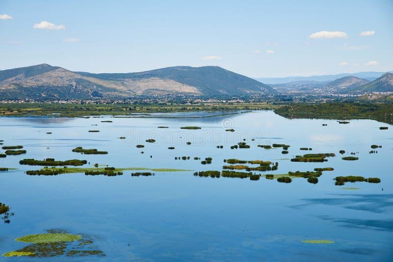 Sikten på Deransko sjön, den Hutovo Blato naturen parkerar, Bosnien och Herz arkivbild