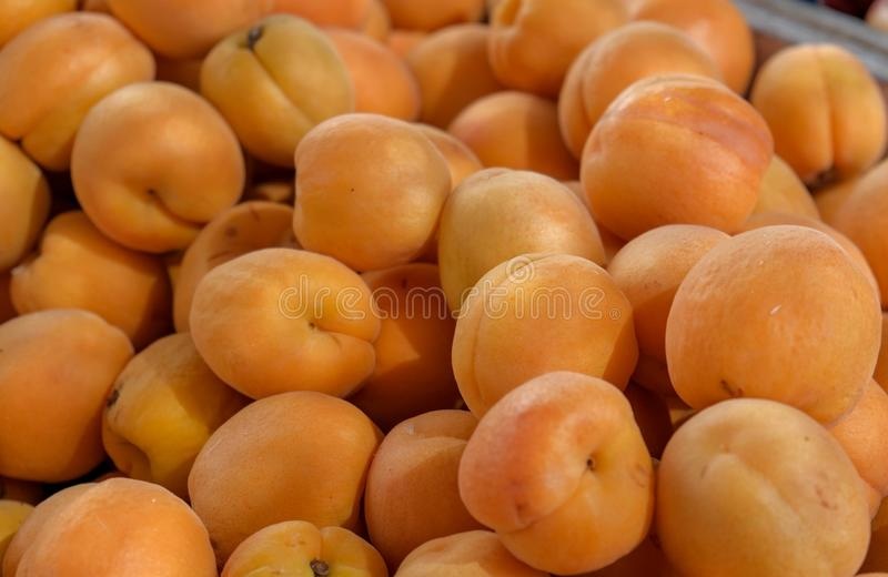Sikten på nya aprikosfrukter från bönderna marknadsför royaltyfri foto