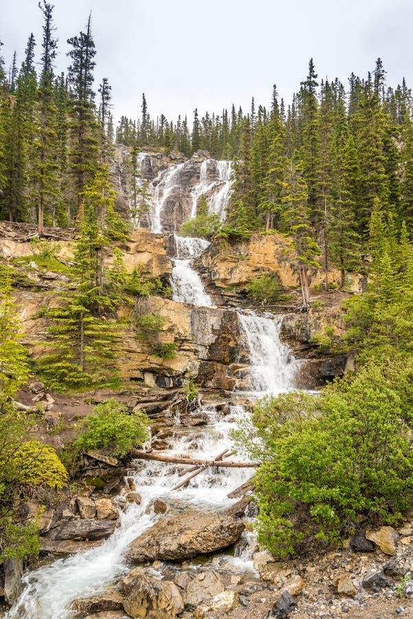 Sikten på tovalilla viken faller nära den Icefields gångallévägen i Jasper National Park - kanadensaren Rocky Mountains arkivfoton