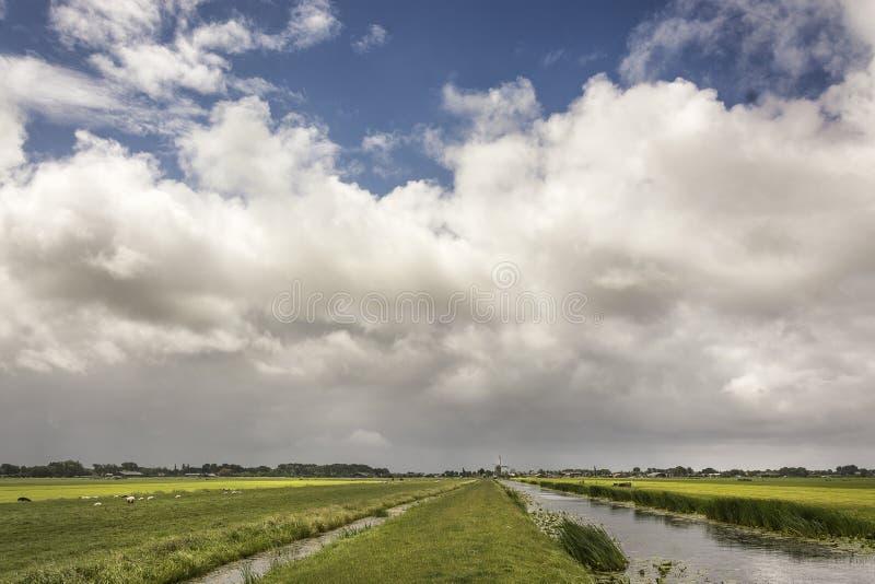 Sikten på typisk sceniskt holländskt landskap i hjort för het Groene av Nederländerna med skurkroll fördunklar i den blåa himlen, arkivfoton