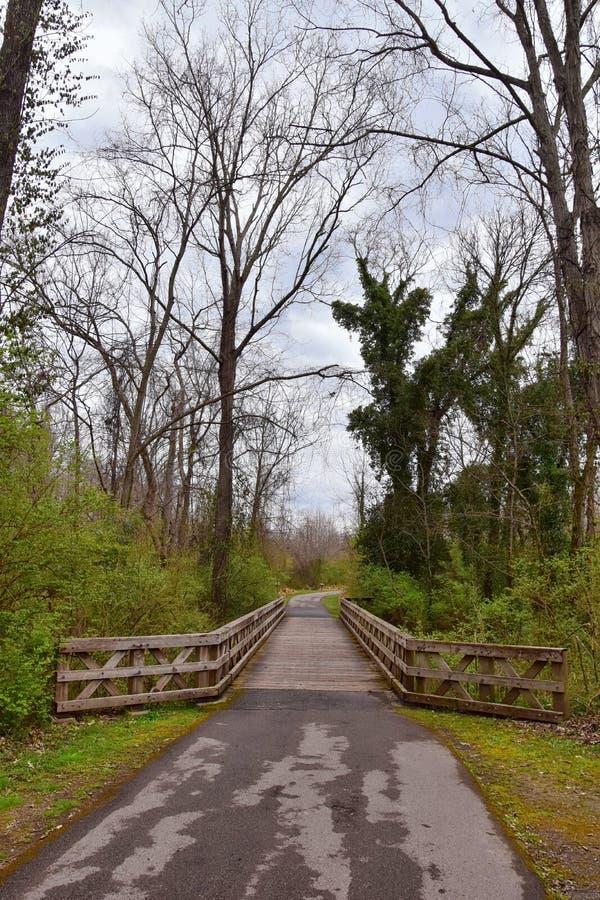 Sikter av broar och banor l?ngs Shelby Bottoms Greenway och de naturliga slingorna f?r omr?desCumberland River fasad, bottomland  royaltyfria bilder