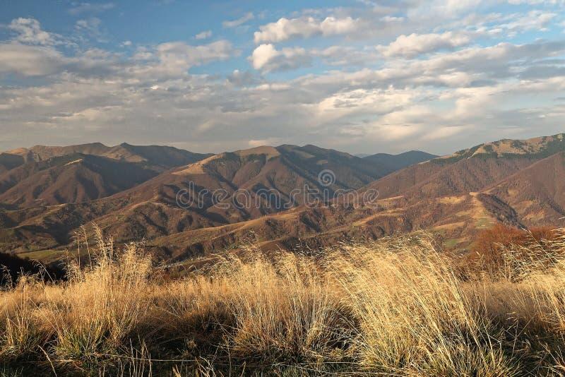 Sikter av de Carpathian bergen från höjden av topans arkivbilder