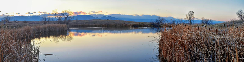 Sikter av den gå banan för Josh's damm, den reflekterande solnedgången i Broomfield Colorado som omges av Cattails, slättar och royaltyfria foton