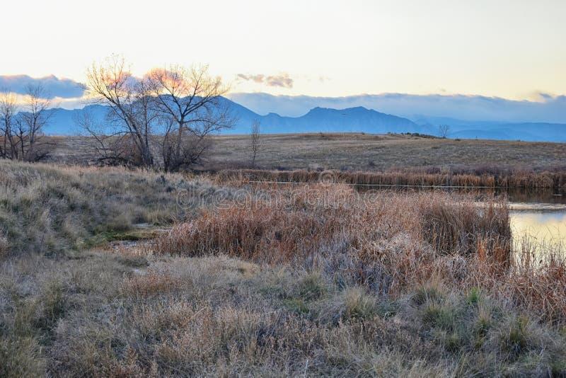Sikter av den gå banan för Josh's damm, den reflekterande solnedgången i Broomfield Colorado som omges av Cattails, slättar och royaltyfri bild