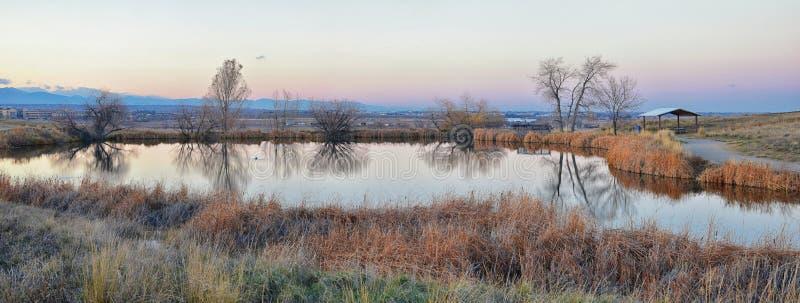 Sikter av den gå banan för Josh's damm, den reflekterande solnedgången i Broomfield Colorado som omges av Cattails, slättar och arkivfoton