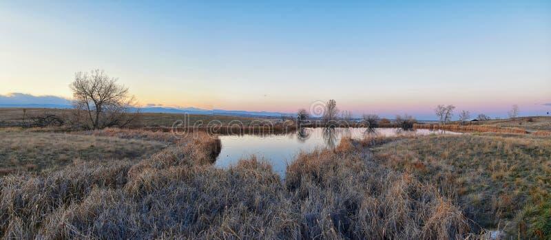 Sikter av den gå banan för Josh's damm, den reflekterande solnedgången i Broomfield Colorado som omges av Cattails, slättar och arkivbilder