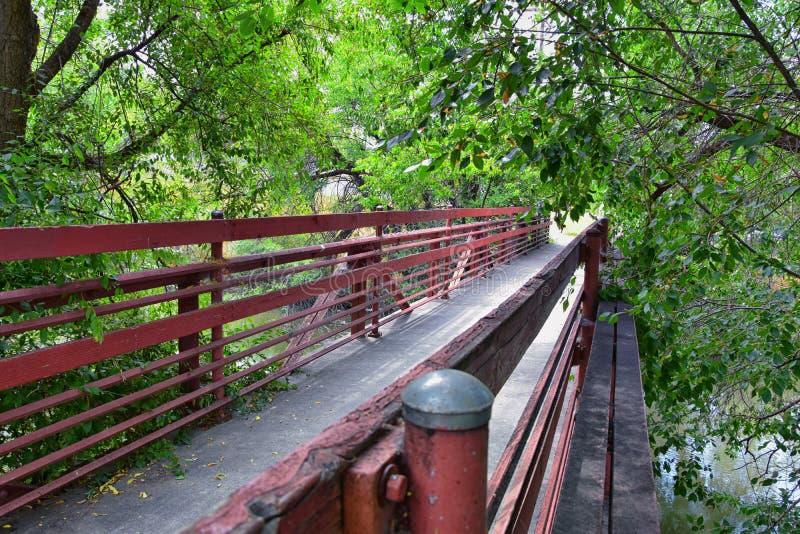 Sikter av den Jordan River Trail Pedestrian och drevspårbron med omgeende träd, rysk oliv, poppel och lerig ström a royaltyfria bilder