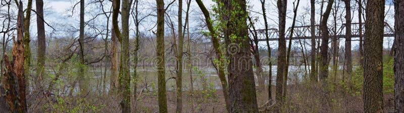 Sikter för drevspårjärnvägsbro längs Shelby Bottoms Greenway och det naturliga området över Cumberland River fasadslingor, musik  arkivfoton