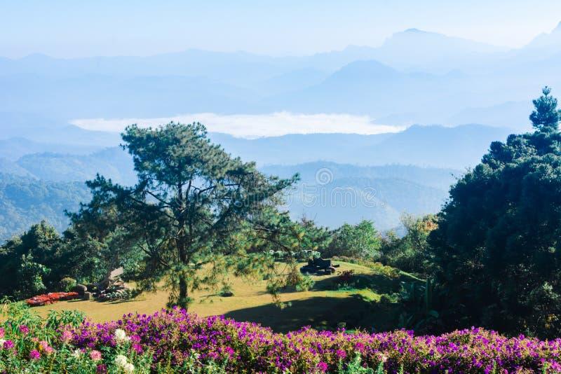 Siktspunkt av den träd-, dimma- och bergplatsen på Huai Nam Dang National Park, Chingmai arkivbilder