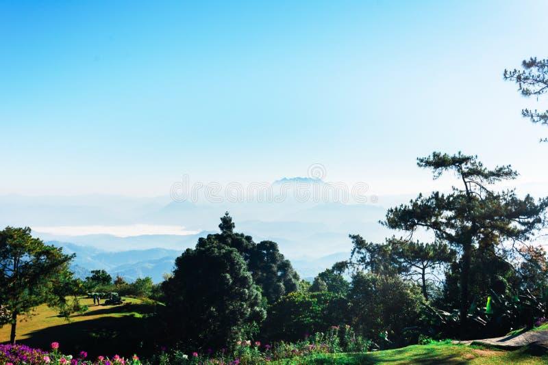 Siktspunkt av trädet, dimma och berget scen äter Huai Nam Dang National Park, Chingmai arkivbild