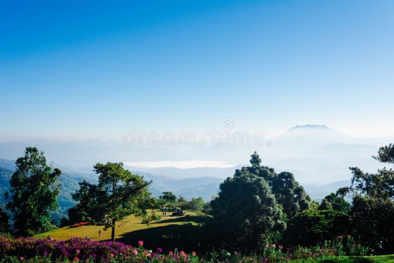 Siktspunkt av trädet, dimma och berget scen äter Huai Nam Dang National Park, Chingmai royaltyfria bilder