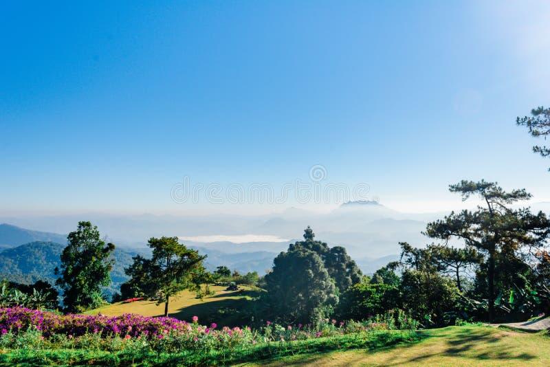 Siktspunkt av trädet, dimma och berget scen äter Huai Nam Dang National Park, Chingmai arkivfoton